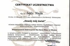 Certyfikat uczestnictwa - 9