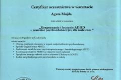 Certyfikat uczestnictwa - 13