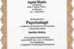 Psychologia IPS