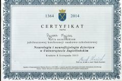 Certyfikat uczestnictwa - 8